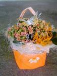 Kalanchoe v ozdobnej textilnej oranžovej taštičke s motýlikom